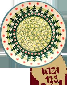 wiza123